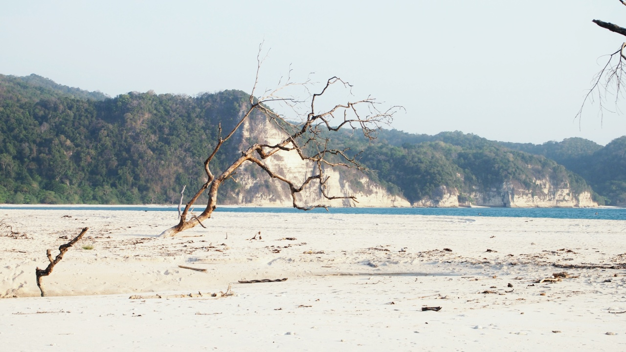 Pantai Tarimbang, tongkrongan surfers dunia